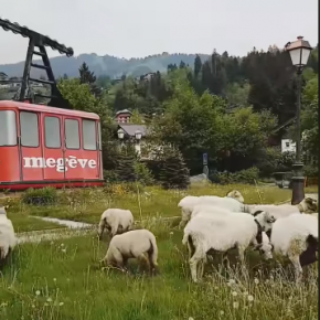Eco-Grazing in Megève